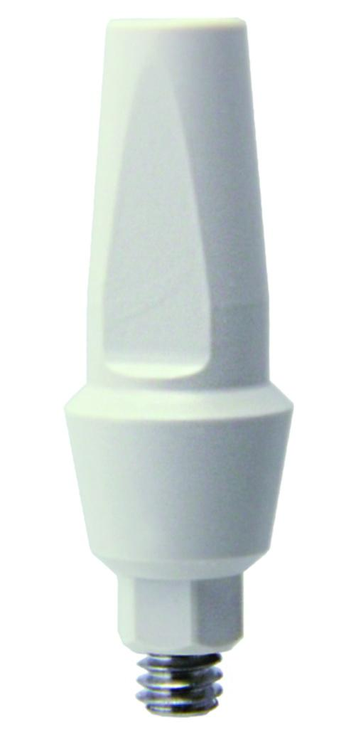 Straight-Anatomic-Peek-Abutment Aesthetic  Abutments